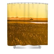 Golden End Of Day  Shower Curtain