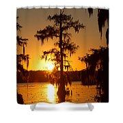 Golden Evening Shower Curtain