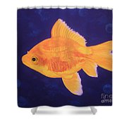 Golden Fish Shower Curtain