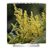 Golden Flora 2013 Shower Curtain