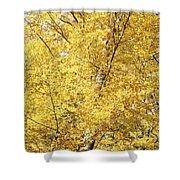 Golden Foliage Shower Curtain
