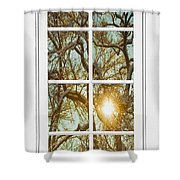 Golden Forest  Branches White 8 Windowpane View Shower Curtain