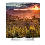 Golden Glory Shower Curtain