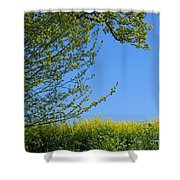 Golden Growing Season Shower Curtain