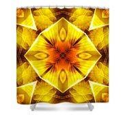 Golden Harmony - 3 Shower Curtain