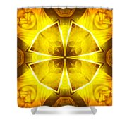 Golden Harmony - 4 Shower Curtain