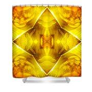 Golden Harmony  Shower Curtain