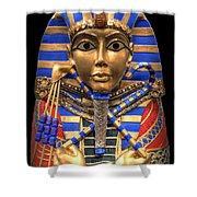 Golden Inner Sarcophagus Of A Pharaoh Shower Curtain by Daniel Hagerman