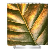 Golden Leaf 2 Shower Curtain