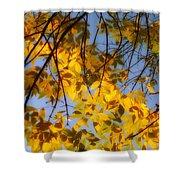 Golden Leaf Cascade Shower Curtain