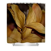 Golden Leafed Abstract 2013 Shower Curtain