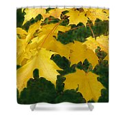 Golden Leaves Floating Shower Curtain