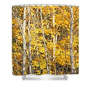 Golden Leaves In Autumn Abstract Shower Curtain