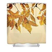 Golden Leaves Shower Curtain