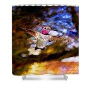 Golden Light Hummingbird Flight Shower Curtain