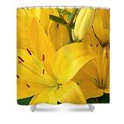 Golden Lilies Shower Curtain