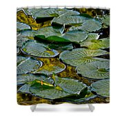 Golden Lilly Pads Shower Curtain