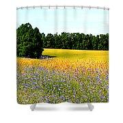 Golden Meadow Shower Curtain