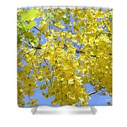 Golden Medallion Shower Tree Shower Curtain