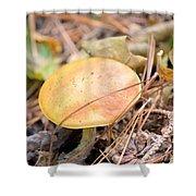 Golden Mushroom Shower Curtain
