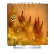 Golden Palette Shower Curtain by Annie Snel