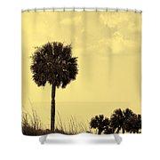 Golden Palm Silhouette Shower Curtain