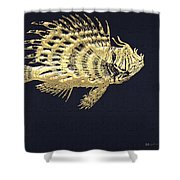 Golden Parrot Fish On Charcoal Black Shower Curtain