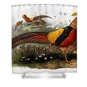 Golden Pheasants Shower Curtain