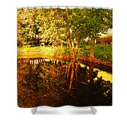 Golden Pond 4 Shower Curtain