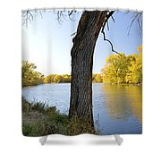 Golden Pond Panorama Shower Curtain