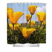 Golden Poppies Shower Curtain