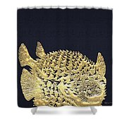Golden Puffer Fish On Charcoal Black Shower Curtain