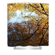 Golden Reflection Shower Curtain