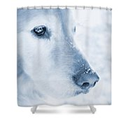Golden Retriever Dog Snowflakes On My Nose Shower Curtain