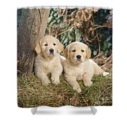 Golden Retriever Puppies In The Woods Shower Curtain