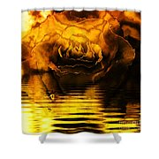 Golden Rose On The Lake Shower Curtain