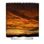 Golden Saguaro Shower Curtain