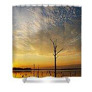 Golden Shadows Shower Curtain