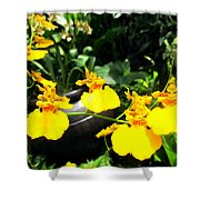 Golden Shower Or Dancing Lady Flower Shower Curtain