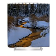 Golden Silence Shower Curtain