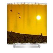 Golden Sky... Shower Curtain