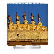 Golden Spires Udaipur City Palace India Shower Curtain