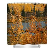 Golden Spot Shower Curtain