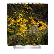 Golden Spring Flowers  Shower Curtain