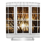 Golden Sun Silhouetted Tree Branches White Window View Shower Curtain