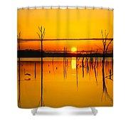 Golden Sunrise Iv Shower Curtain