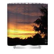 Golden Sunset 3 Shower Curtain