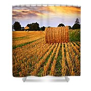 Golden Sunset Over Farm Field In Ontario Shower Curtain by Elena Elisseeva