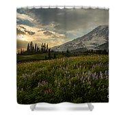 Golden Sunstar Rainier Meadows Shower Curtain