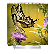 Golden Swallowtail Shower Curtain